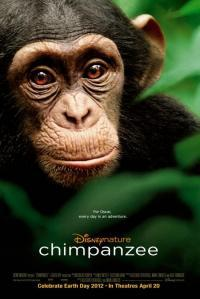 Chimpanzee movie poster